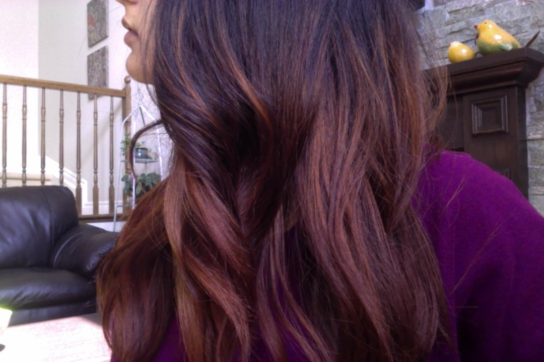 Lush Henna Ombre Hair Tutorial Joni Journal